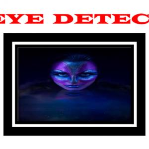 (L)Eye Detector by Harvey Raft - Trick
